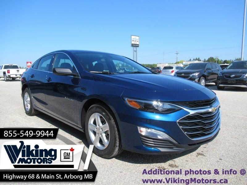 New 2019 Chevrolet Malibu LS - - $160 B/W