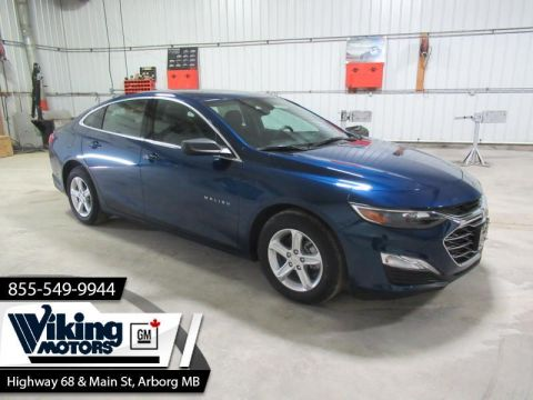 2019 Chevrolet Malibu LS  - Remote Start - Cruise Control - $149 B/W